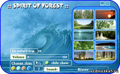 Spirit of forest - программа для реалаксации сидя за компьютером.